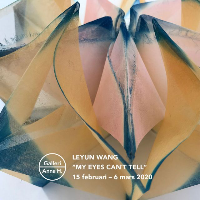 "Leyun Wang —  ""My eyes can´t tell"""